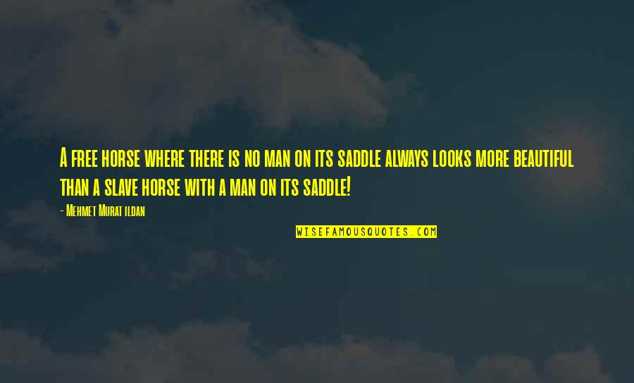 Amish The Devil Quotes By Mehmet Murat Ildan: A free horse where there is no man