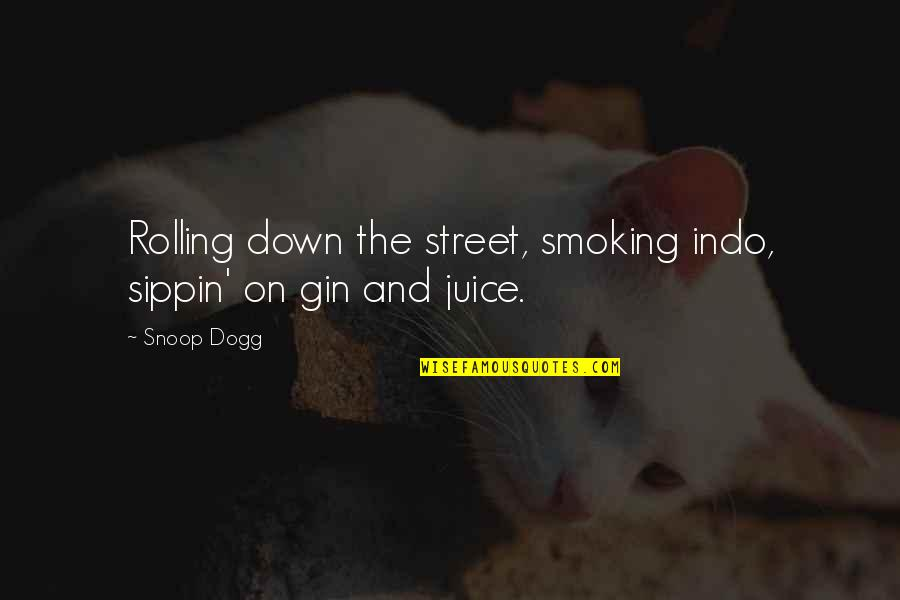 Amity Book Quotes By Snoop Dogg: Rolling down the street, smoking indo, sippin' on