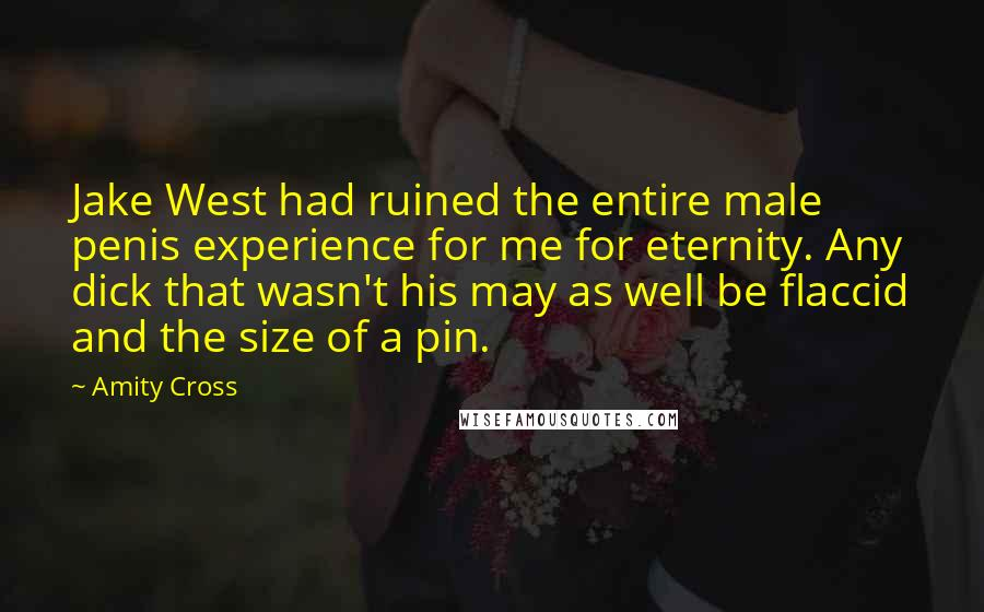 Amity Cross quotes: Jake West had ruined the entire male penis experience for me for eternity. Any dick that wasn't his may as well be flaccid and the size of a pin.