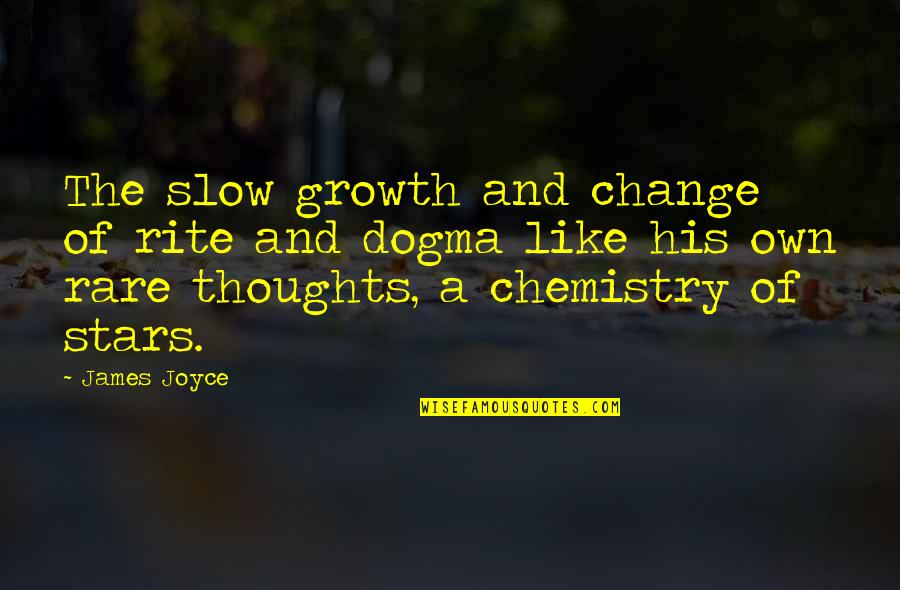 Amor Fati Memorable Quotes By James Joyce: The slow growth and change of rite and