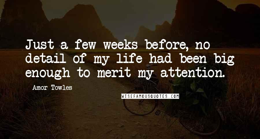 Amor Towles quotes: Just a few weeks before, no detail of my life had been big enough to merit my attention.