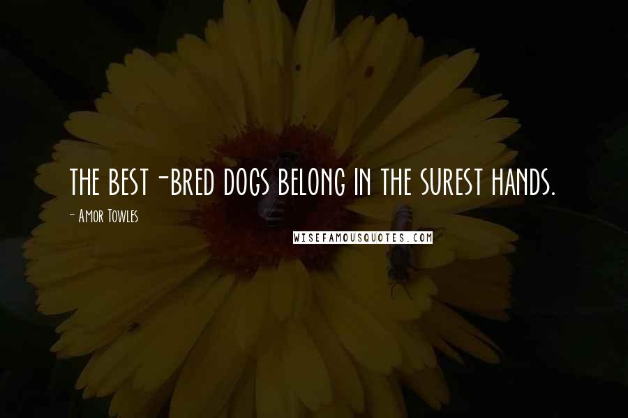 Amor Towles quotes: the best-bred dogs belong in the surest hands.