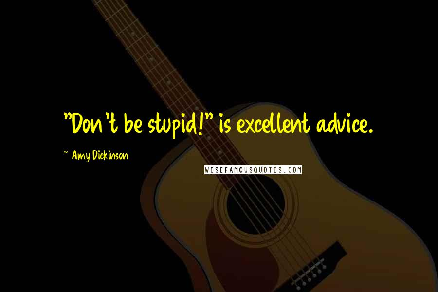 """Amy Dickinson quotes: """"Don't be stupid!"""" is excellent advice."""