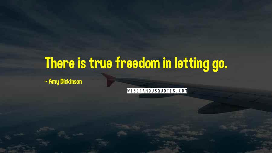 Amy Dickinson quotes: There is true freedom in letting go.
