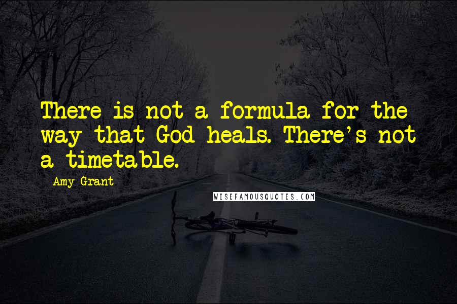 Amy Grant quotes: There is not a formula for the way that God heals. There's not a timetable.