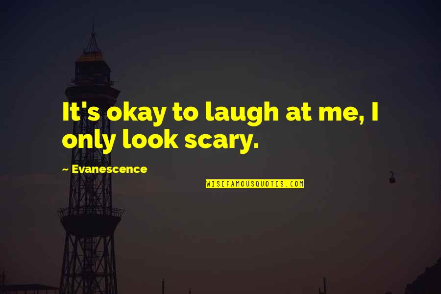 Amy Lee Evanescence Quotes By Evanescence: It's okay to laugh at me, I only