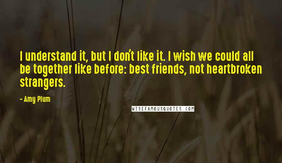 Amy Plum quotes: I understand it, but I don't like it. I wish we could all be together like before: best friends, not heartbroken strangers.