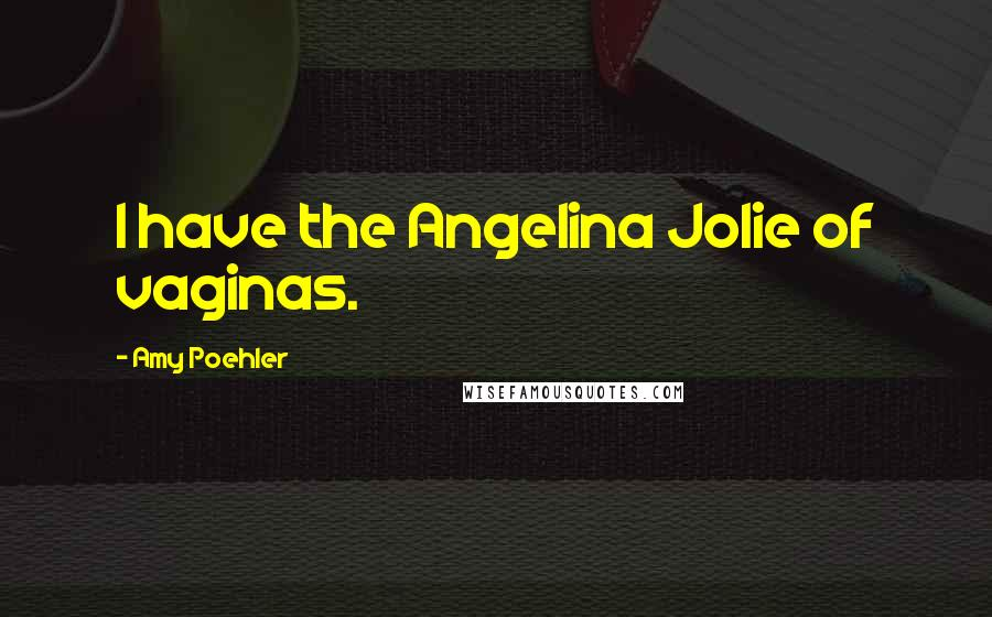 Amy Poehler quotes: I have the Angelina Jolie of vaginas.