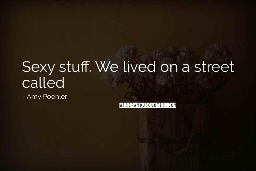 Amy Poehler quotes: Sexy stuff. We lived on a street called