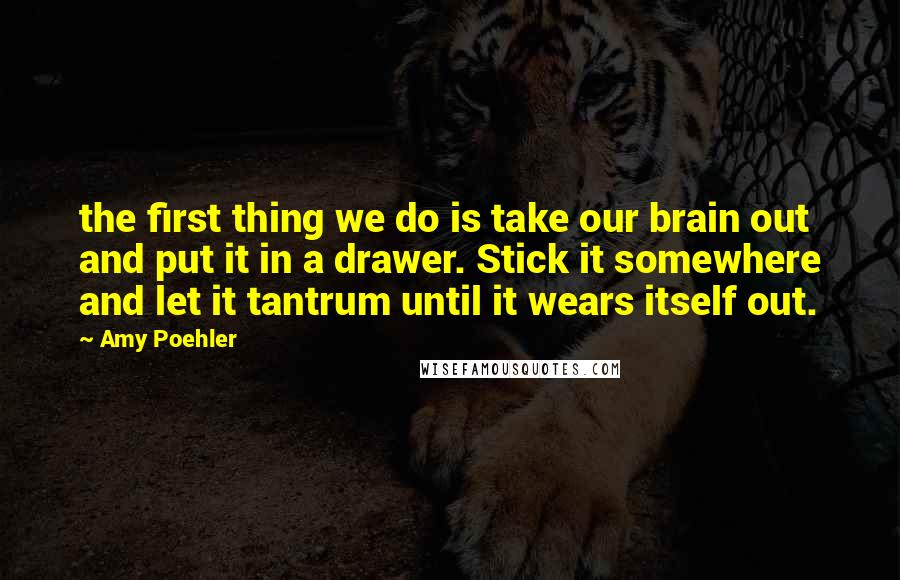 Amy Poehler quotes: the first thing we do is take our brain out and put it in a drawer. Stick it somewhere and let it tantrum until it wears itself out.