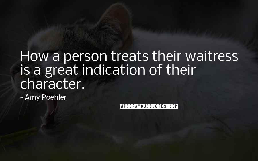 Amy Poehler quotes: How a person treats their waitress is a great indication of their character.