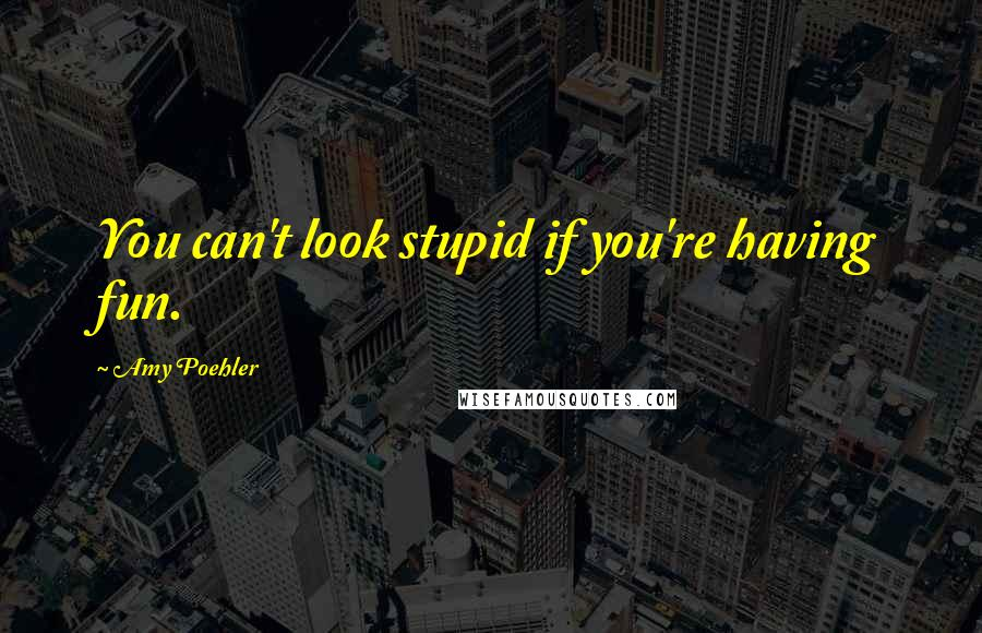 Amy Poehler quotes: You can't look stupid if you're having fun.