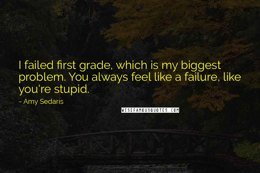 Amy Sedaris quotes: I failed first grade, which is my biggest problem. You always feel like a failure, like you're stupid.