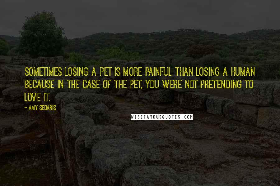 Amy Sedaris quotes: Sometimes losing a pet is more painful than losing a human because in the case of the pet, you were not pretending to love it.