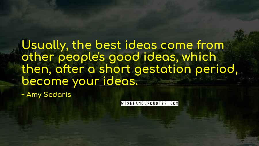 Amy Sedaris quotes: Usually, the best ideas come from other people's good ideas, which then, after a short gestation period, become your ideas.