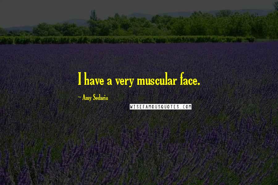 Amy Sedaris quotes: I have a very muscular face.