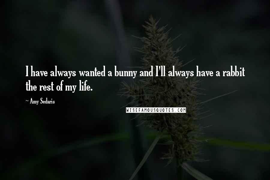 Amy Sedaris quotes: I have always wanted a bunny and I'll always have a rabbit the rest of my life.