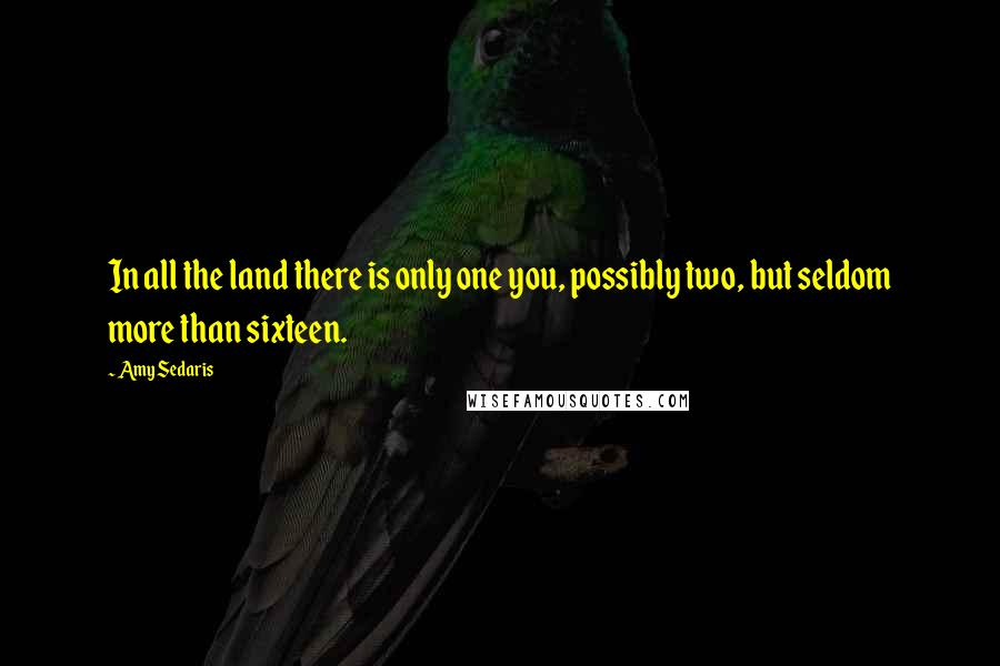 Amy Sedaris quotes: In all the land there is only one you, possibly two, but seldom more than sixteen.