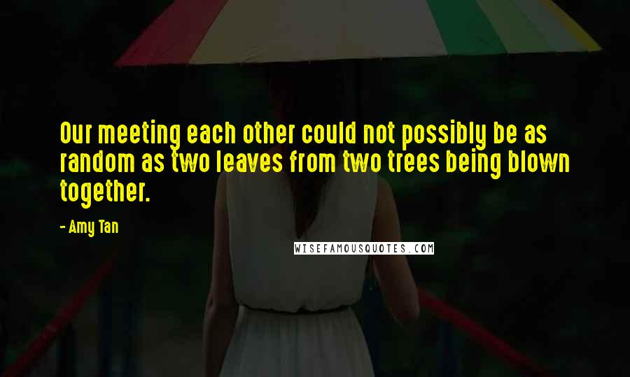 Amy Tan quotes: Our meeting each other could not possibly be as random as two leaves from two trees being blown together.