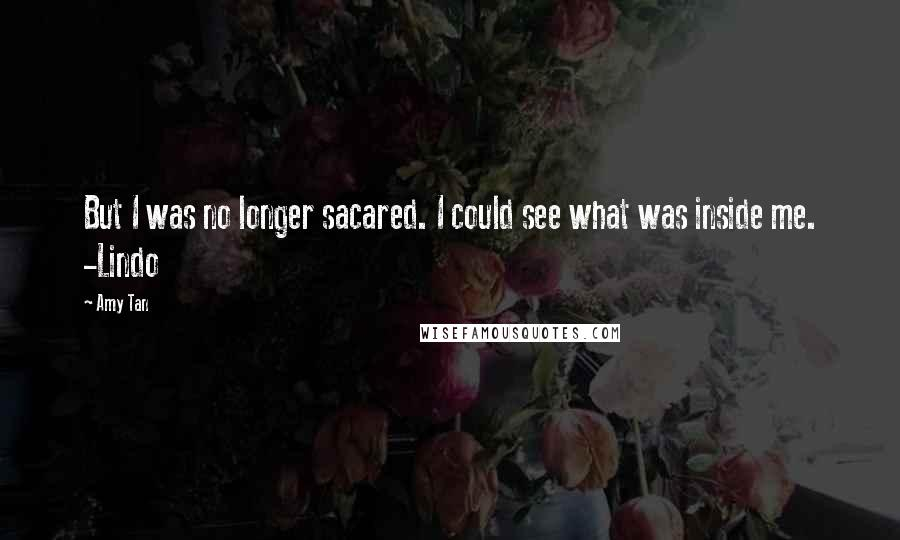 Amy Tan quotes: But I was no longer sacared. I could see what was inside me. -Lindo
