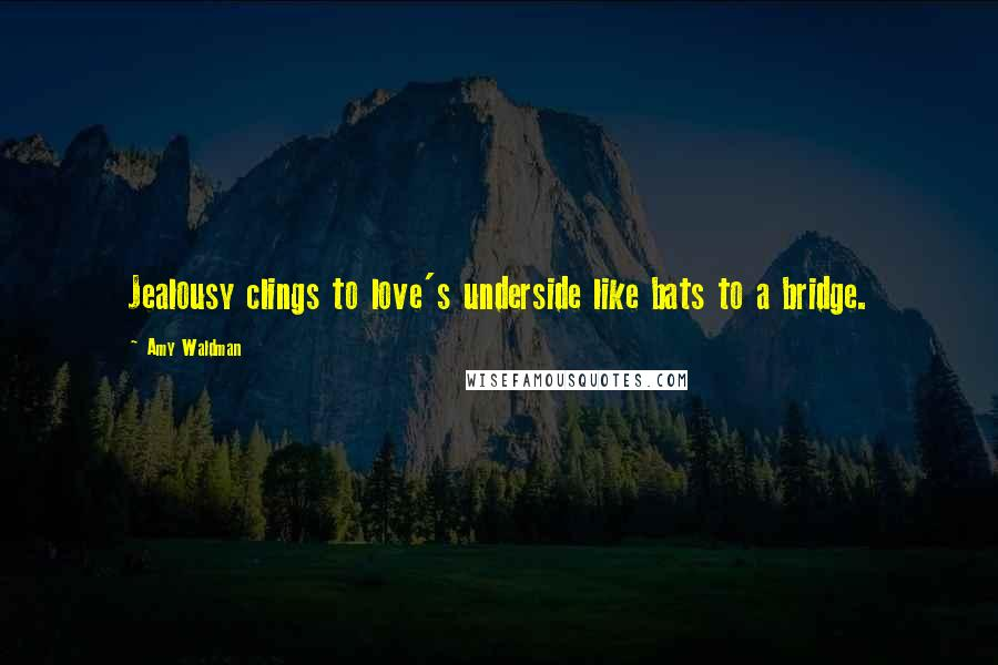 Amy Waldman quotes: Jealousy clings to love's underside like bats to a bridge.