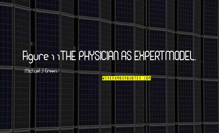 Anacreon Quotes By Michael J. Green: Figure 1-1 THE PHYSICIAN-AS-EXPERT MODEL.
