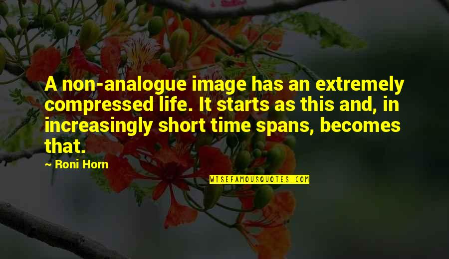 Analogue Quotes By Roni Horn: A non-analogue image has an extremely compressed life.