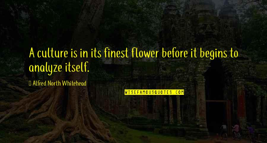 Analyze Quotes By Alfred North Whitehead: A culture is in its finest flower before