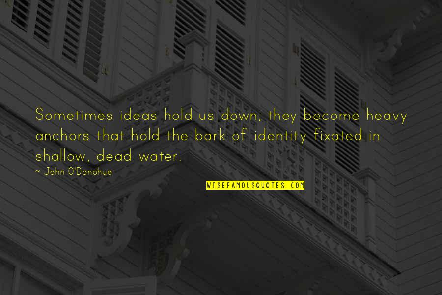 Anchors Quotes By John O'Donohue: Sometimes ideas hold us down; they become heavy