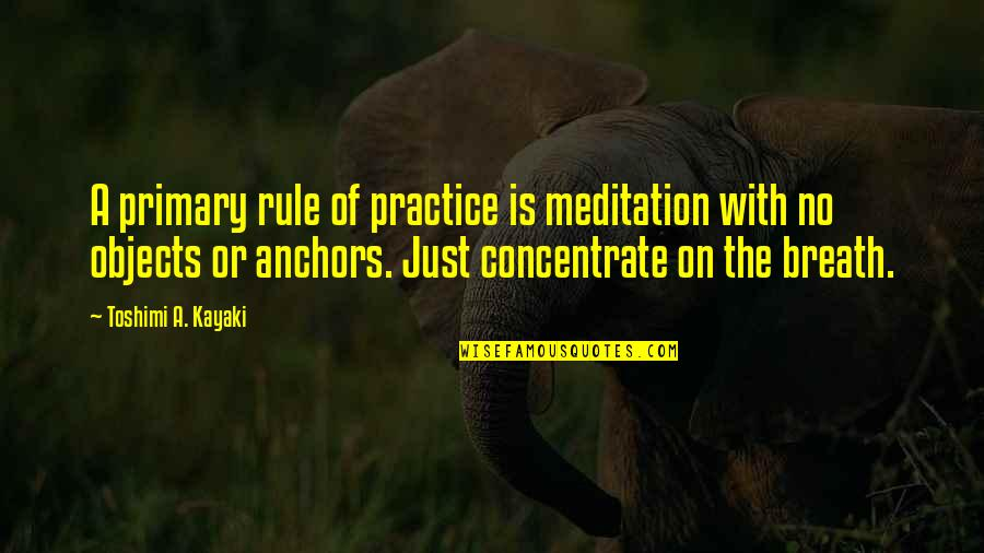 Anchors Quotes By Toshimi A. Kayaki: A primary rule of practice is meditation with