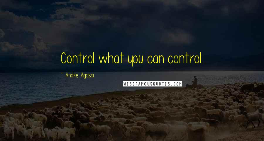 Andre Agassi quotes: Control what you can control.