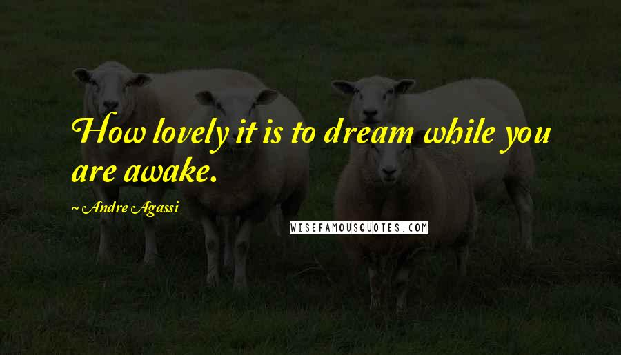 Andre Agassi quotes: How lovely it is to dream while you are awake.