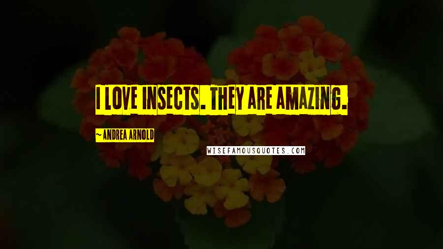 Andrea Arnold quotes: I love insects. They are amazing.