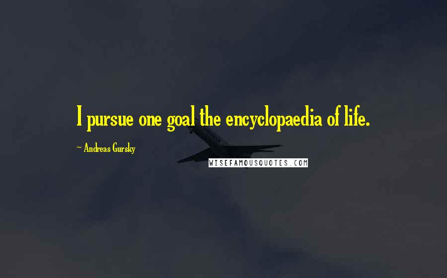 Andreas Gursky quotes: I pursue one goal the encyclopaedia of life.