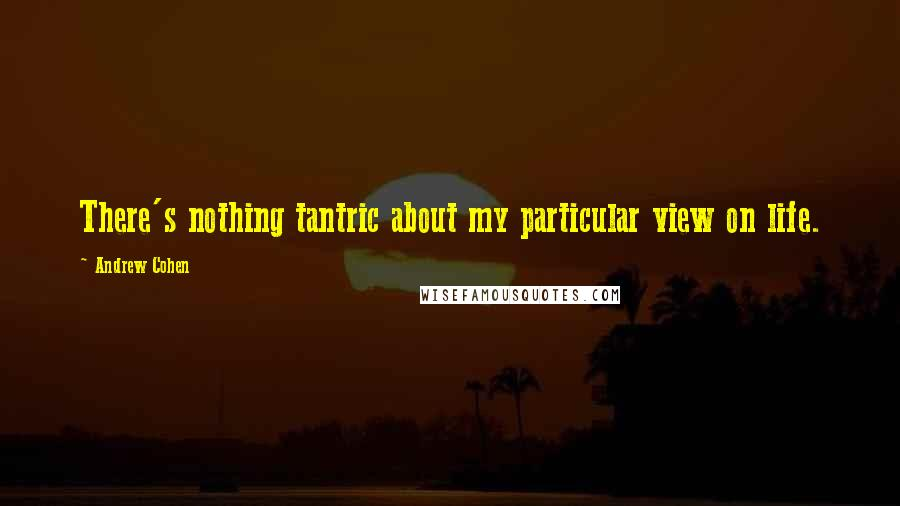 Andrew Cohen quotes: There's nothing tantric about my particular view on life.