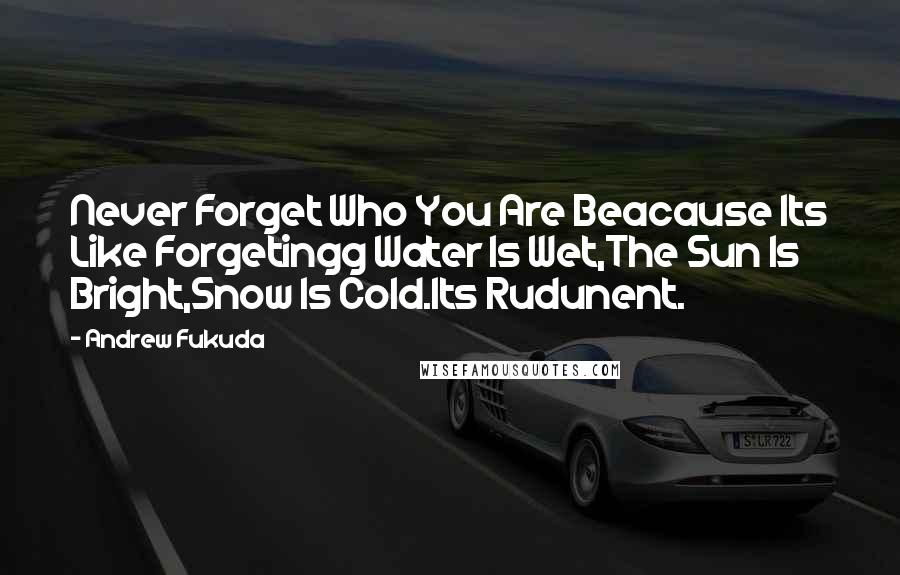 Andrew Fukuda quotes: Never Forget Who You Are Beacause Its Like Forgetingg Water Is Wet,The Sun Is Bright,Snow Is Cold.Its Rudunent.