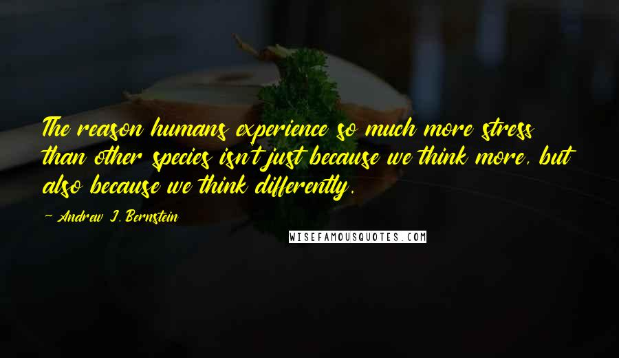 Andrew J. Bernstein quotes: The reason humans experience so much more stress than other species isn't just because we think more, but also because we think differently.