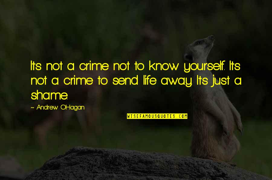 Andrew O'hagan Quotes By Andrew O'Hagan: It's not a crime not to know yourself.