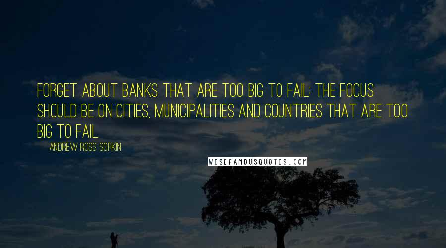 Andrew Ross Sorkin quotes: Forget about banks that are too big to fail; the focus should be on cities, municipalities and countries that are too big to fail.