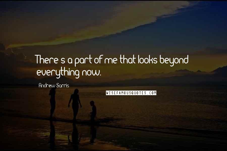 Andrew Sarris quotes: There's a part of me that looks beyond everything now.