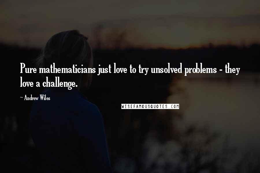 Andrew Wiles quotes: Pure mathematicians just love to try unsolved problems - they love a challenge.