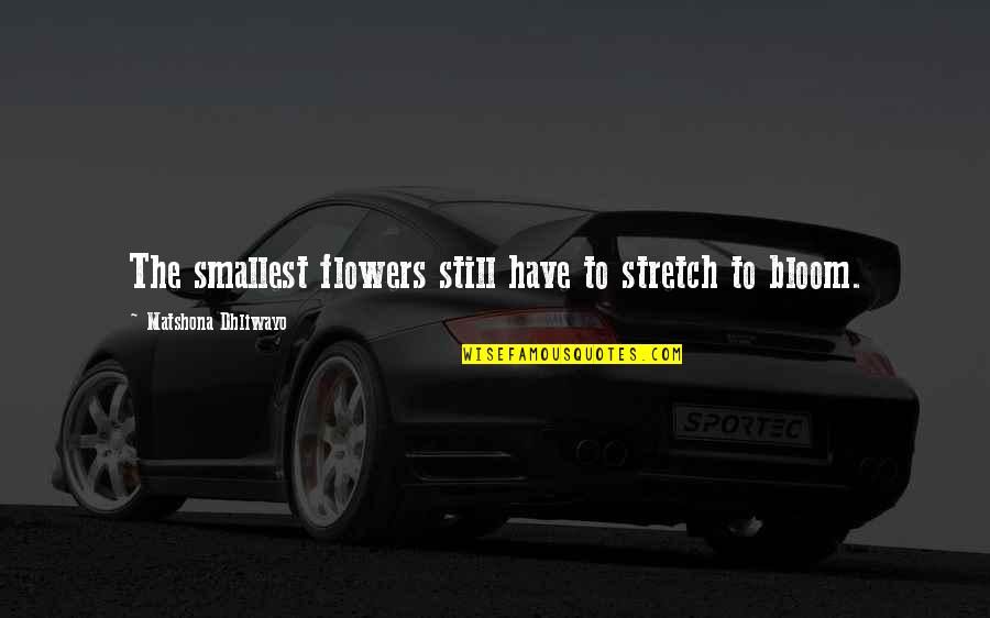 Android Os Quotes By Matshona Dhliwayo: The smallest flowers still have to stretch to