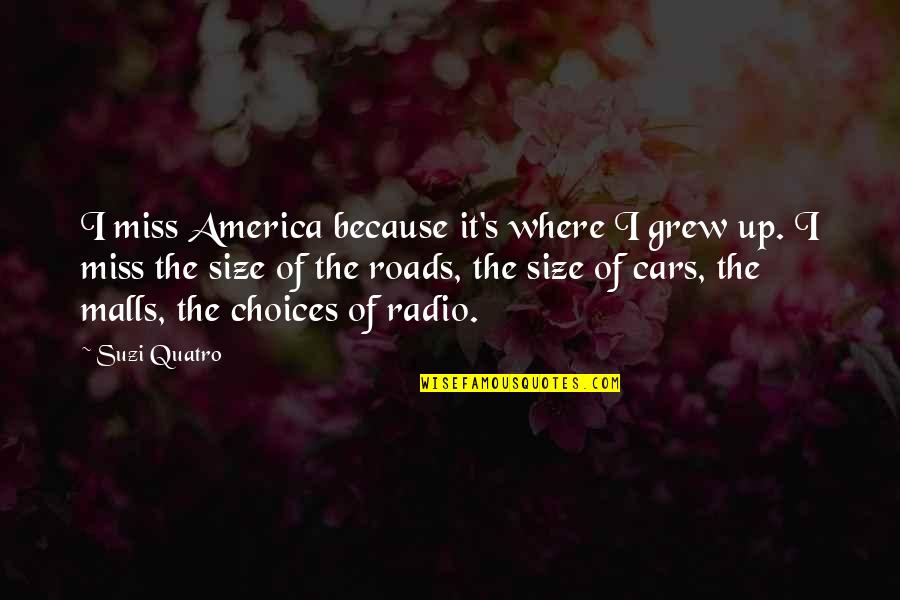 Andsets Quotes By Suzi Quatro: I miss America because it's where I grew