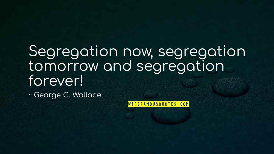 Andtwilight Quotes By George C. Wallace: Segregation now, segregation tomorrow and segregation forever!
