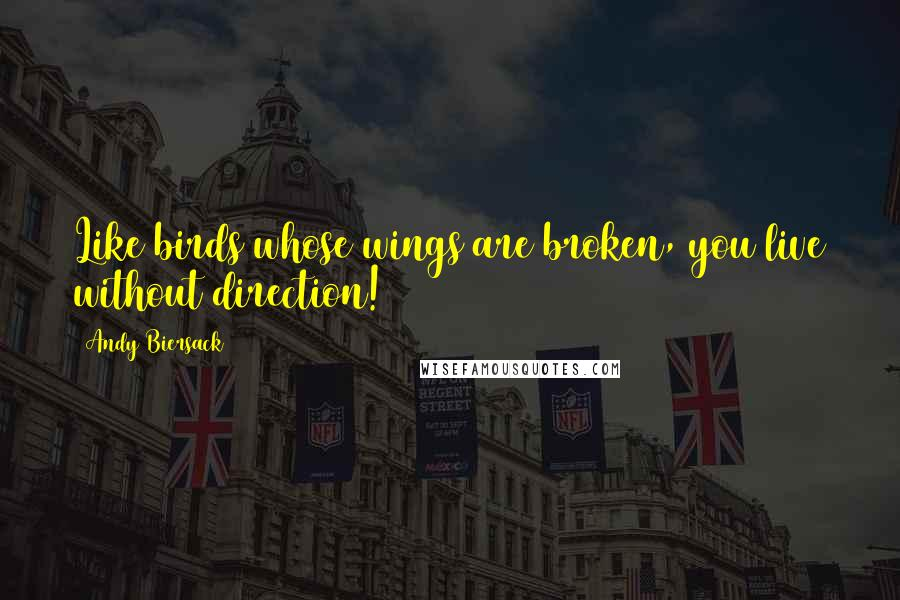 Andy Biersack quotes: Like birds whose wings are broken, you live without direction!