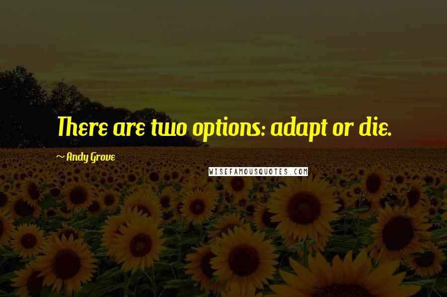 Andy Grove quotes: There are two options: adapt or die.