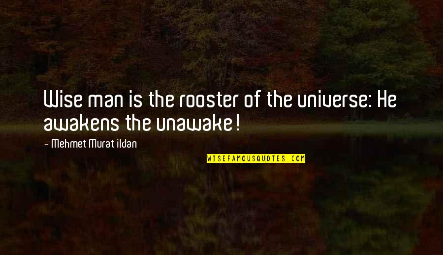 Anest Quotes By Mehmet Murat Ildan: Wise man is the rooster of the universe: