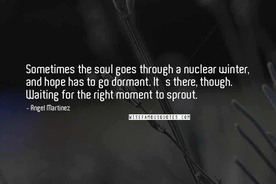 Angel Martinez quotes: Sometimes the soul goes through a nuclear winter, and hope has to go dormant. It's there, though. Waiting for the right moment to sprout.