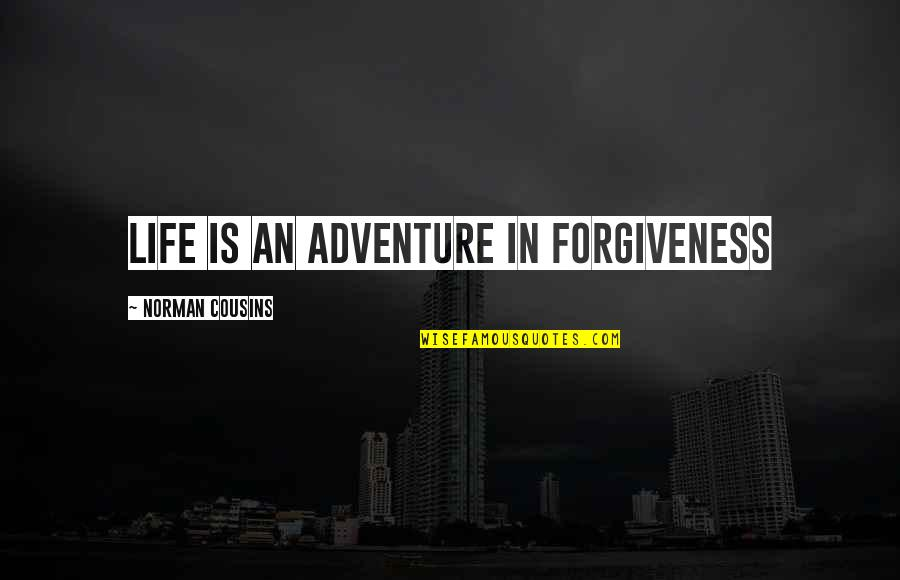 Angela Rizzoli Quotes By Norman Cousins: Life is an adventure in forgiveness