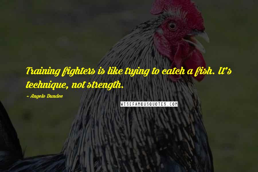 Angelo Dundee quotes: Training fighters is like trying to catch a fish. It's technique, not strength.